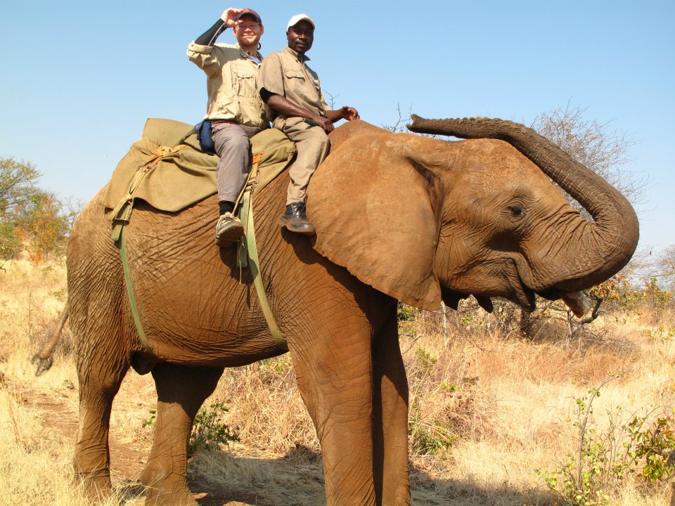 David on an Elephant in Zambia
