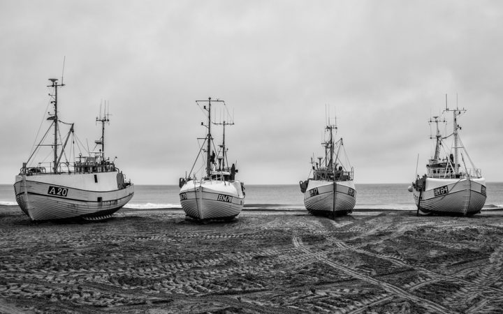 The Bay Denmark Fishing Ships