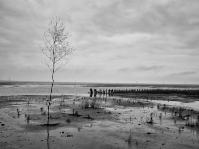 Wadden Sea by Alex Berger