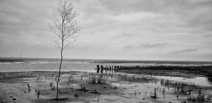 The Wadden Sea – Weekly Travel Photo & Product Review