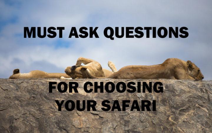 How to choose a safari