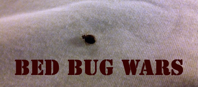 Biting Back – Bed Bugs, Treatment, Hostels and Hotels